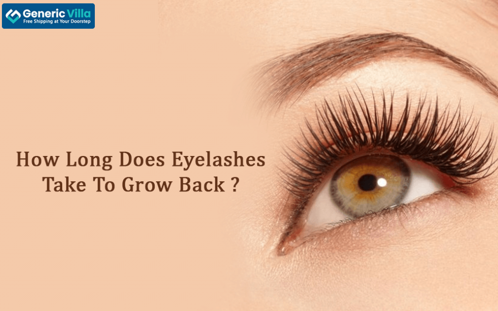 How Long Does Eyelashes Take To Grow Back? Generic Villa